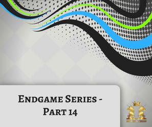Endgame Series - 14