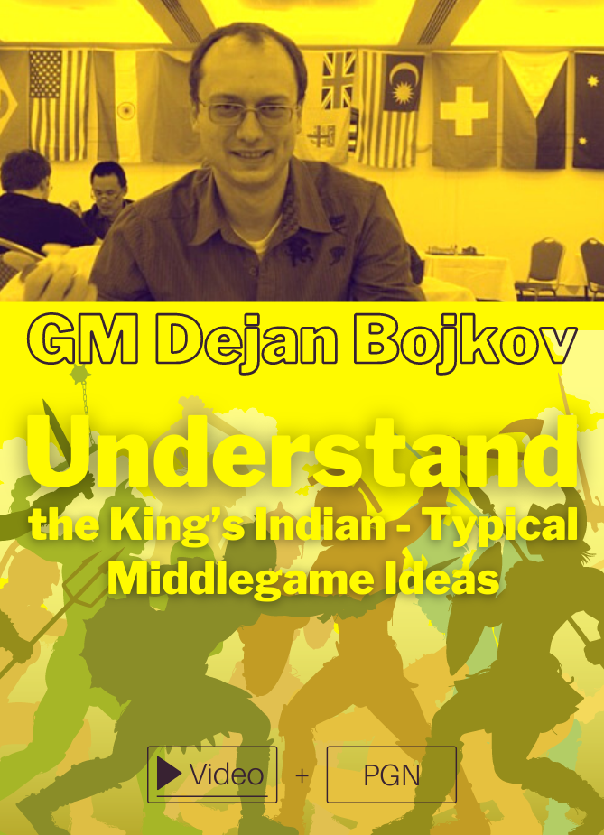 Understand the King's Indian - Typical Middlegame Ideas